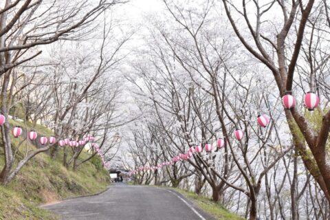 島ノ瀬ダム
